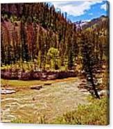 Snake River And Kayaker Canvas Print