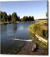 Snake River At Schwabacher Landing  Canvas Print