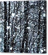 Snoball Flakes Canvas Print