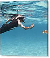 Snorkeler Photographing Green Turtle Canvas Print