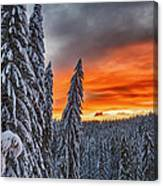 Snow And Sunrise Canvas Print
