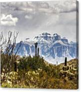 Snow Atop The Superstitions Canvas Print