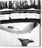 Snow Bridge In Canadian Rockies Canvas Print