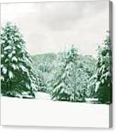 Snow Covered Countryside Canvas Print