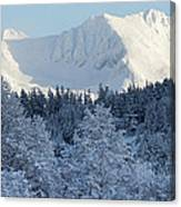 Snow Covered Mount Currie From Whistler Canvas Print