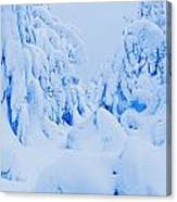 Snow-covered To Vallee Des Fantomes Canvas Print