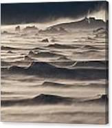 Snow Drift Over Winter Sea Ice Canvas Print