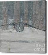 Snow Hunter- Great Gray Owl Canvas Print