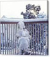 Snow On Grilles Canvas Print