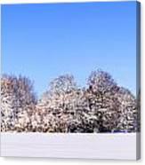 Snow Panoramic Landscape Canvas Print