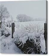 Snow, Rime Ice, And Fog Cover Canvas Print