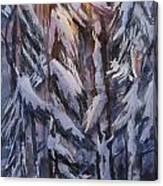 Snow Splattered 1 Canvas Print