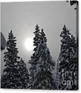 Snow Sun Canvas Print