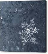 Snowflake In Blue Canvas Print