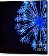 Snowflake Sparkle Canvas Print