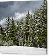 Snowstorm In The Cascades Canvas Print