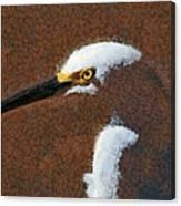 Snowy Egret Profile Painterly Canvas Print