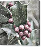 Snowy Holly Christmas Card Canvas Print