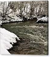Snowy Mountain River Canvas Print