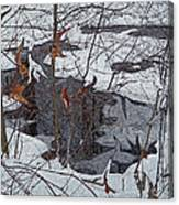 Snowy Pond Canvas Print