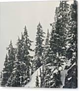 Snowy Ridge Near Snoqualmie Pass Canvas Print