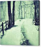 Snowy Wooded Path Canvas Print