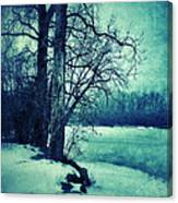 Snowy Woods By A Lake Canvas Print