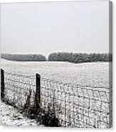 Snowyfence Canvas Print