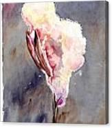 Soffio Canvas Print