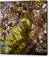 Soft Pastel Spring Canvas Print
