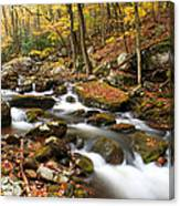 Softly Flowing Canvas Print