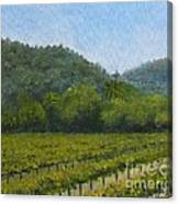 Solis Winery Canvas Print