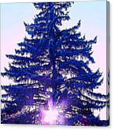 Solitary Trees Poster Canvas Print