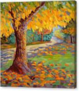 Solstice Glow Canvas Print