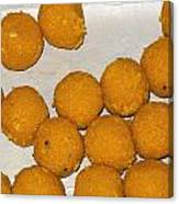 Some Indian Sweets Called A Ladoo In The Shape Of A Sphere Canvas Print