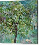 Song Of The Trees Canvas Print