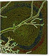 Songbird Green Canvas Print