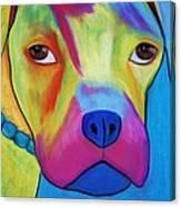 Sonny Blu Canvas Print