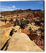 South Fruita Overlook Canvas Print