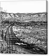 South Platte Park II Canvas Print
