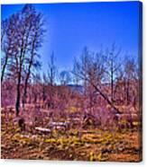 South Platte Park Landscape Canvas Print