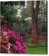 Southern Garden - Fs000148 Canvas Print