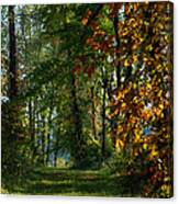 Southern Indiana Fall Colors Canvas Print
