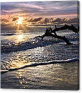 Sparkly Water At Driftwood Beach Canvas Print