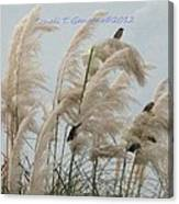 Sparrows In Breeze Canvas Print