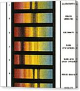 Spectra Chart, Blood Samples, 1894 Canvas Print