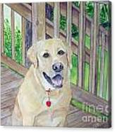Spencer On Porch Canvas Print
