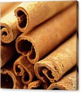 Spice, Cinnamon, Canvas Print