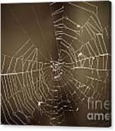 Spider Web 1.0 Canvas Print