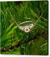 Spider Webs And Diamond Rings 10 Canvas Print